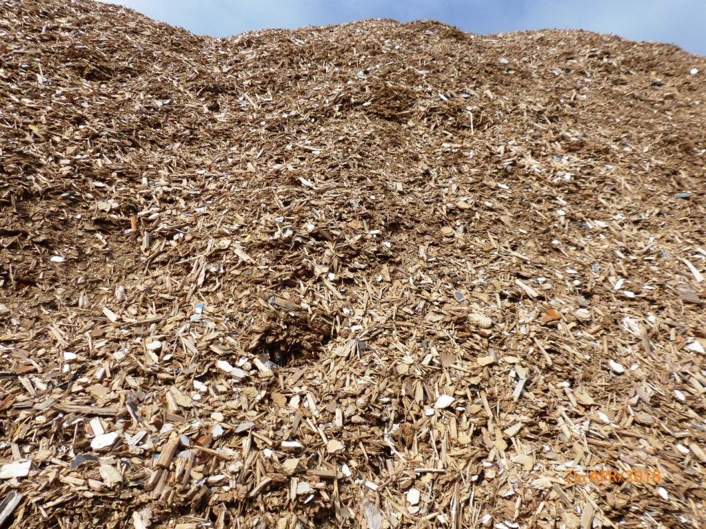 High grade wood chip waiting to go to RWE biomass plant